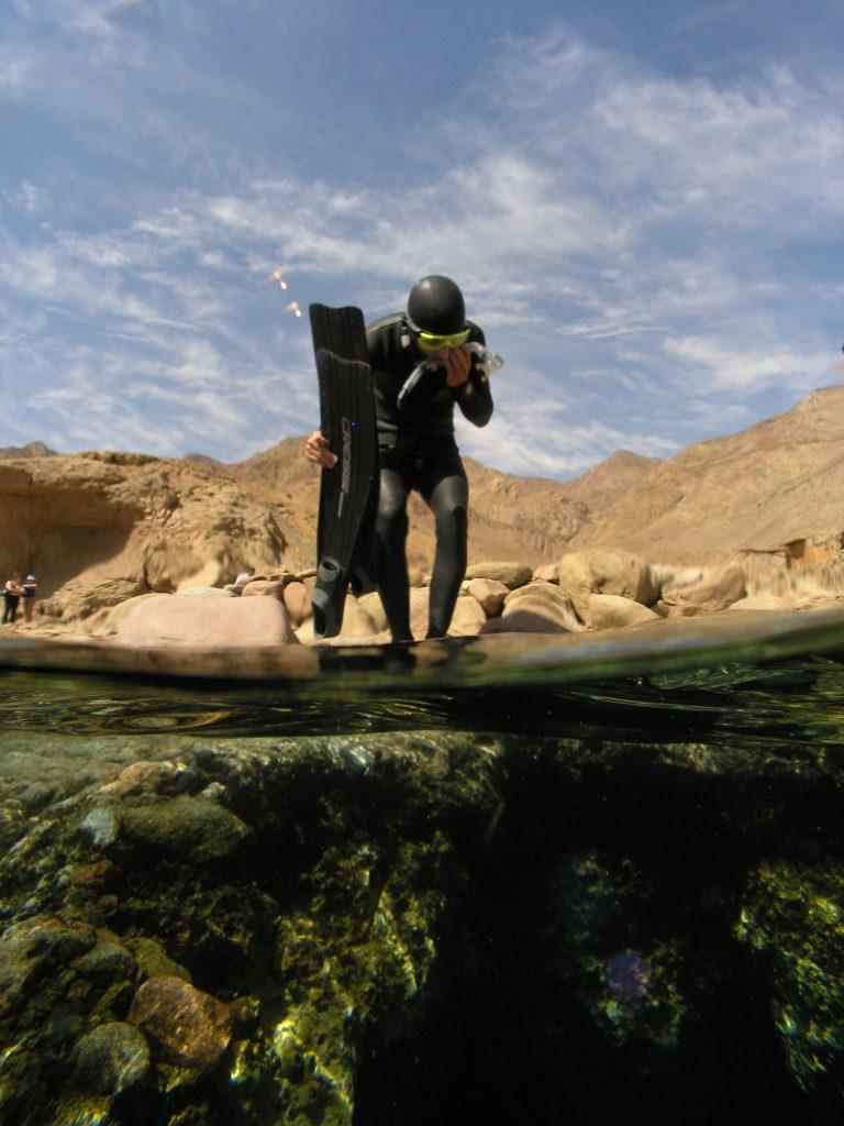 Dags för ännu ett dyk. Foto Annelie Pompe