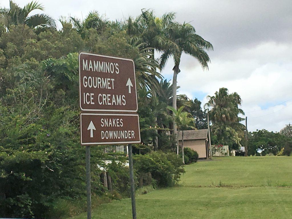 mamminos-icecream