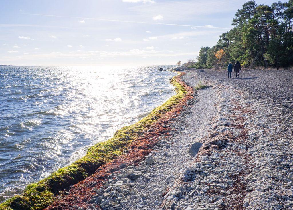 Områden i Sverige