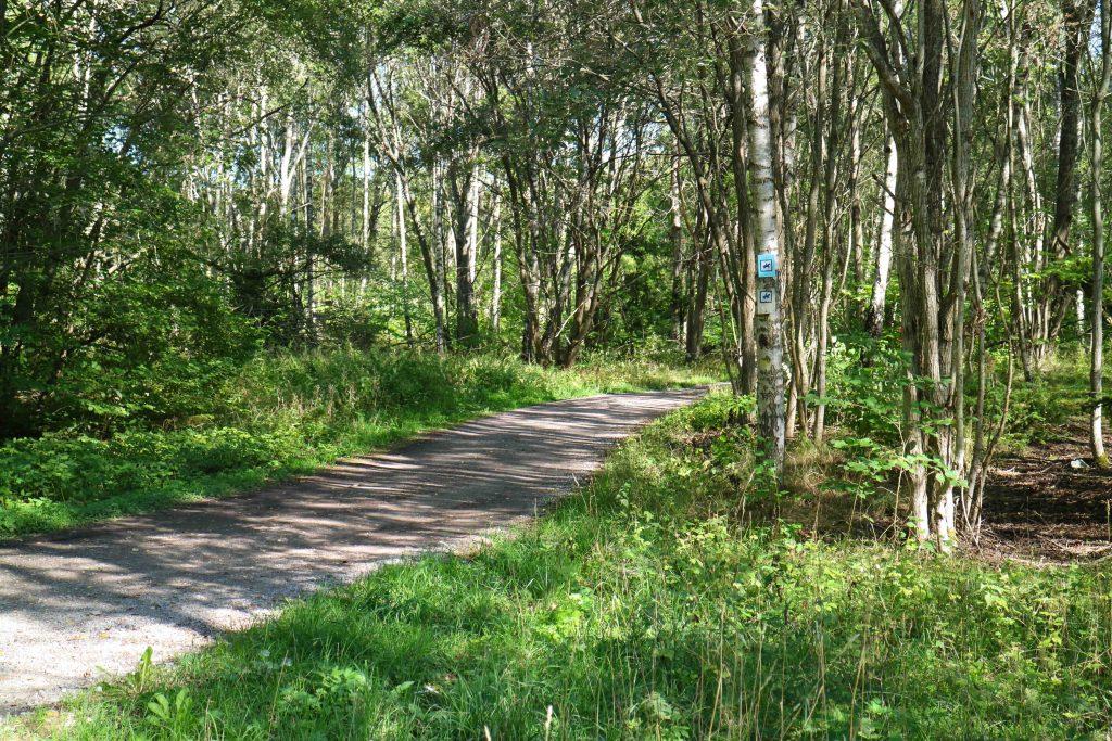 Träna och motionera i Sundbyberg