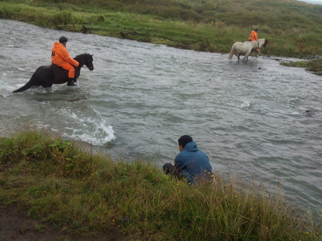 hållbar turism hästar