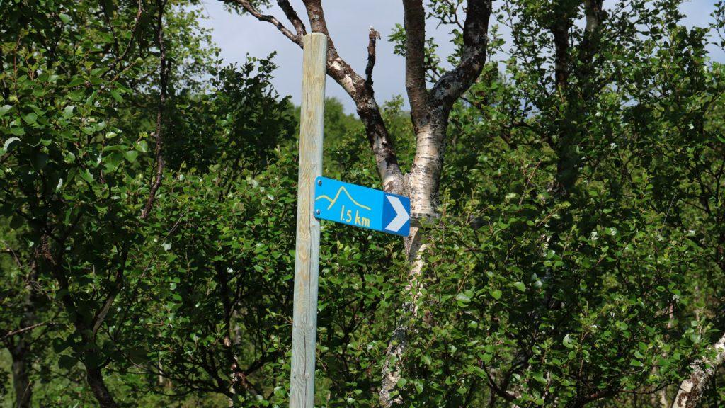 Vandra längs vildmarksvägen i Vilhelmina