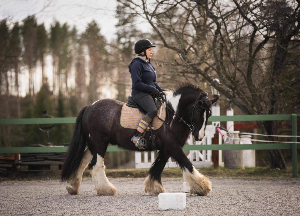 Ser fram emot hösten 2021 häst
