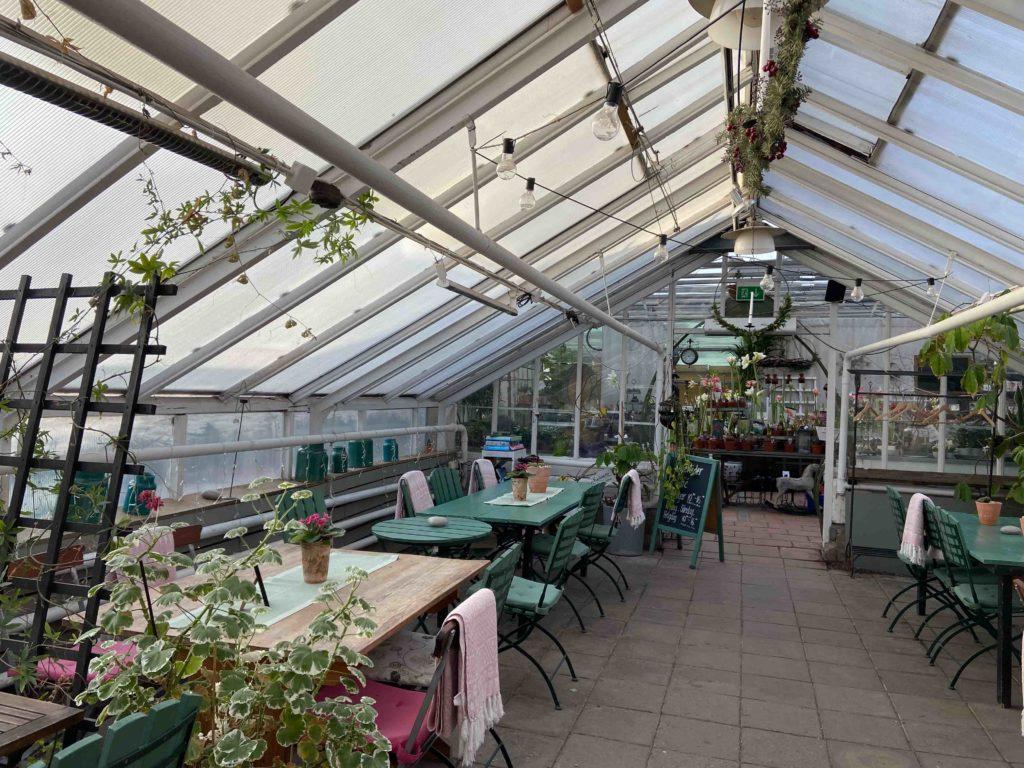 Café i Solna fika brunnsvikens trädgårdscafé