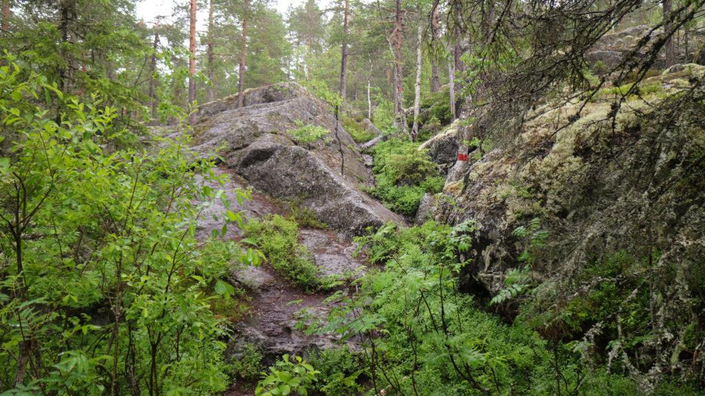 Starberget i Vännäs, västerbotten