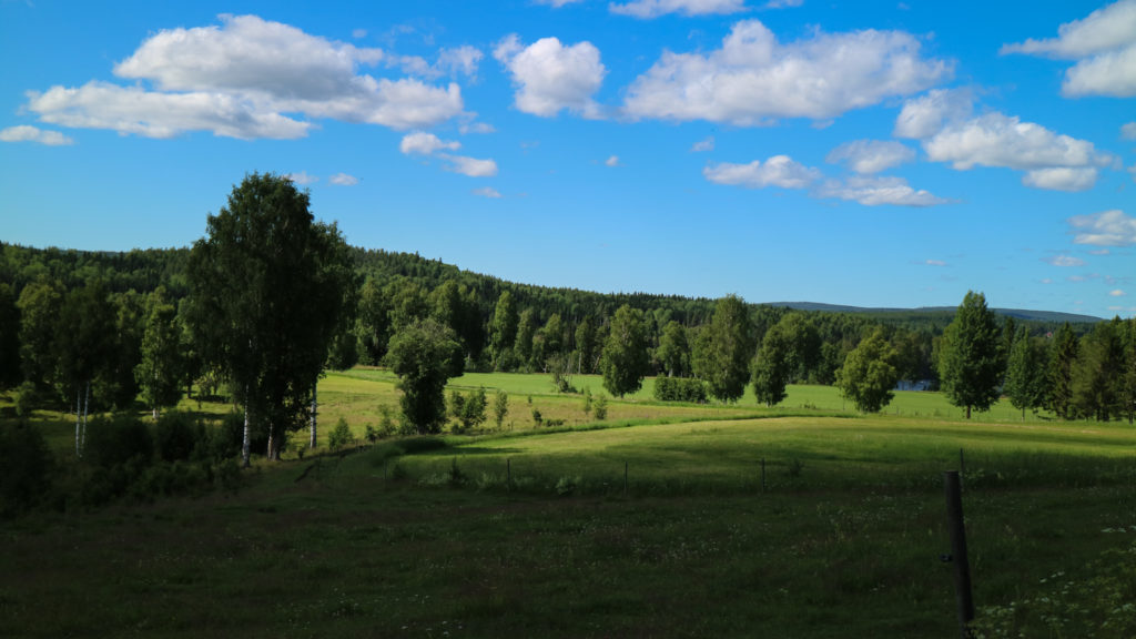 semester i Västerbotten